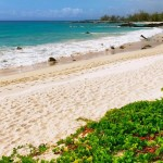 Hawaii - White Sand Beach